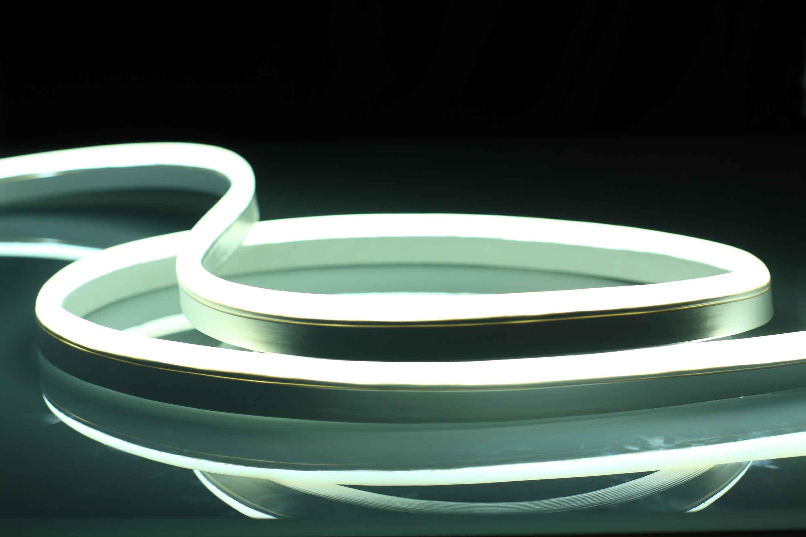 Vivid-S-270-Dynamic-White